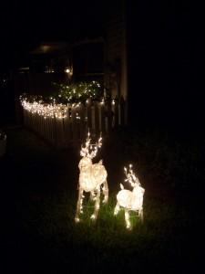 トナカイのクリスマス・イルミネーション
