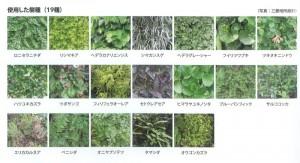 壁面緑化に使用された19種の植物。「建築緑化入門」より抜粋, P202。
