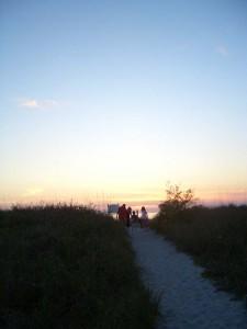 植生で守られたビーチの砂丘があるのが分る。