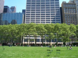 ブライアントパークの芝生とモミジバスズカケノキ