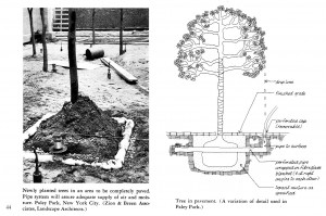 ペイリーパークにおける植栽方法