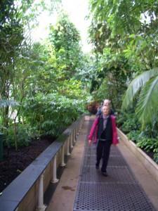 キューガーデンの有名な温室