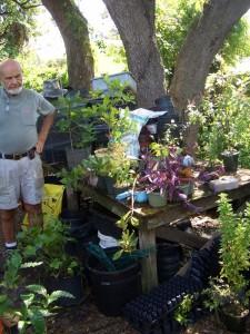 Plant Walkにて植物を紹介するDavid McLean